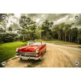 Tuinposter Auto Oldtimer Cuba (5035.3042)