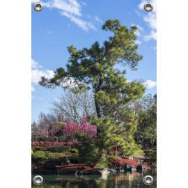 Tuinposter zen tuin achtergrond  (5050.3008)