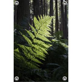 Tuinposter bos met varenblad (5050.3012)