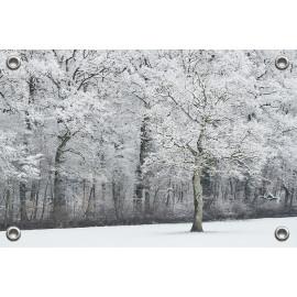 Tuinposter Besneeuwde bomen...