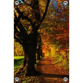 Tuinposter Bos (5050.3040)