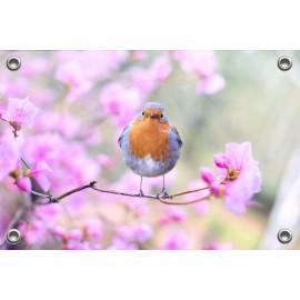 Tuinposter Vogel op bloesemtak (5070.3017)