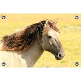 Tuinposter Paardenhoofd (5070.3022)