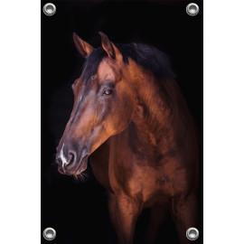 Tuinposter Bruin paard (5070.3024)
