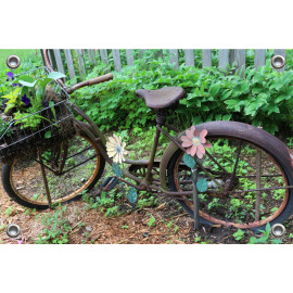 Tuinposter Oude Fiets in Tuin (5096.3008)