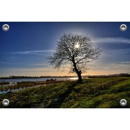 Tuinposter © Glenn Aoys - Biesbosch (6210.1008)