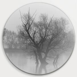 Muurcirkel © Monique Milder - Nevel boven water bij zonsopkomst (6228.5002)