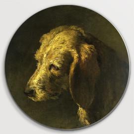 Hondenkop (5010.2018)